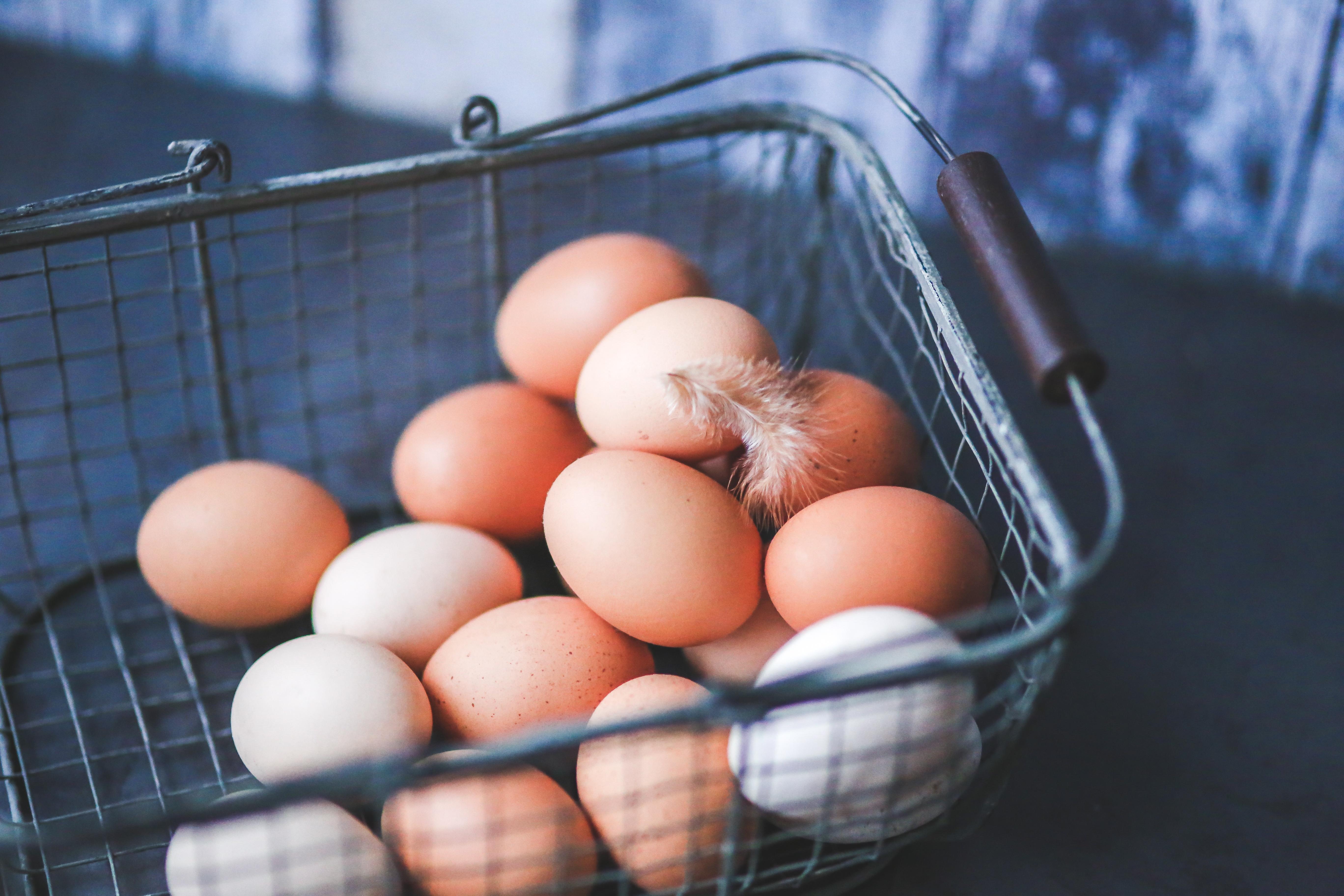 Eggs | IFIS Publishing